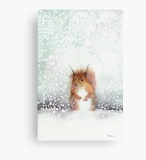 Red Squirrel in the Snow, or, Who Stole My Nuts? Metal Print