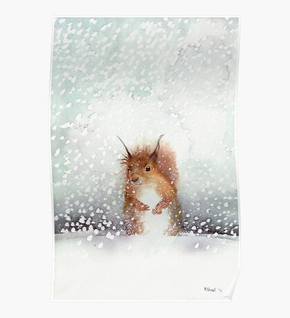 Red Squirrel in the Snow, or, Who Stole My Nuts? Poster