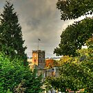 Town House through the trees by Tom Gomez