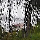 Rain Blessed Rain by DJ LeMay