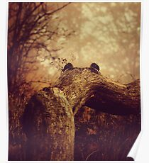 Autumnal mood #6 Poster