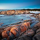 Friendly Beaches, Tasmania, Australia by Matthew Stewart