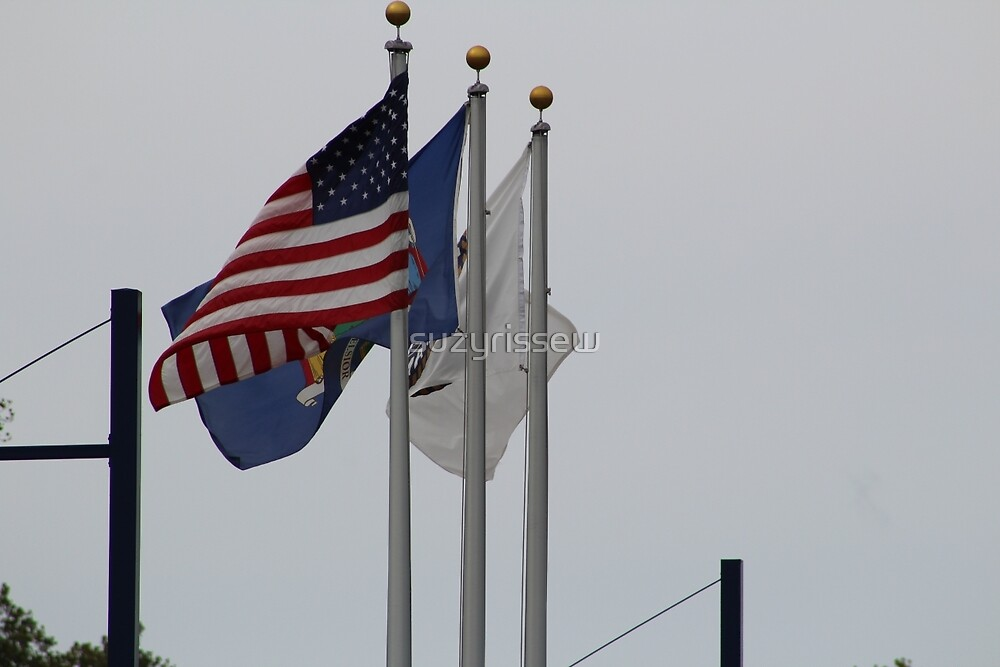 American Flag by suzyrissew