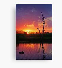 Sunset at Elmore Canvas Print