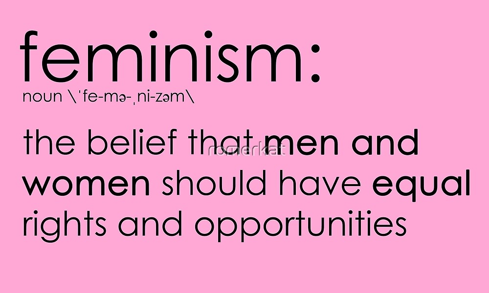The true definition of feminism - pink by romerkat