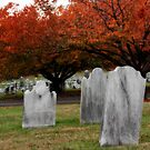 Autumn in the graveyard1 by KerrieLynnPhoto