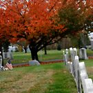 Autumn in the graveyard2 by KerrieLynnPhoto