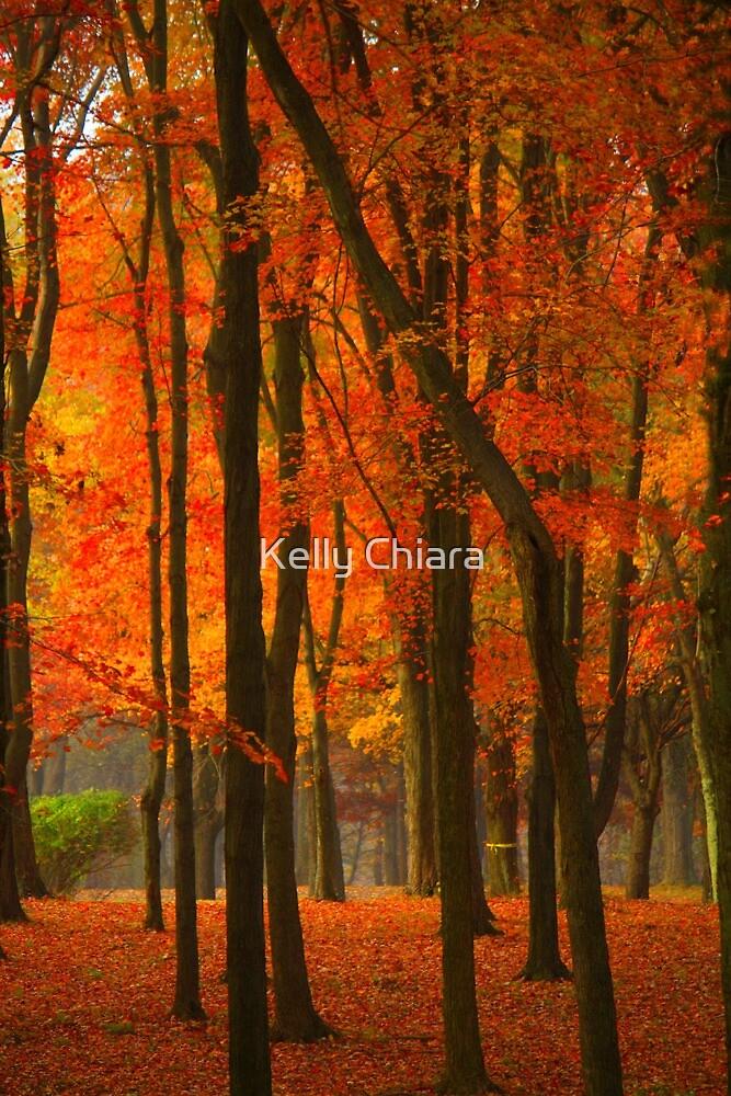 Orange Forest by Kelly Chiara