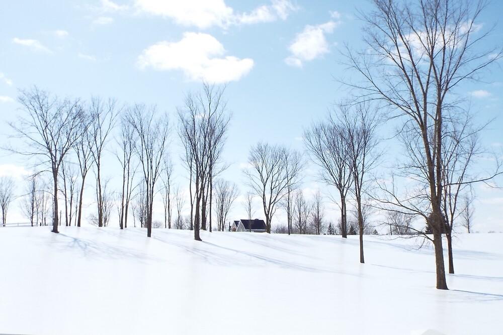 Winter Wonderland by MeganLeigh
