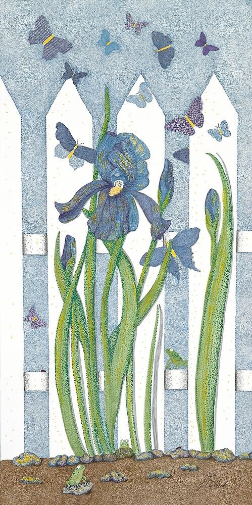 Blue Iris by Judy Newcomb
