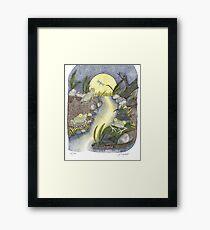 Frogs at Night Framed Print