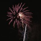 Enmore 2010 Australia Day Firework #2 by yewenyi
