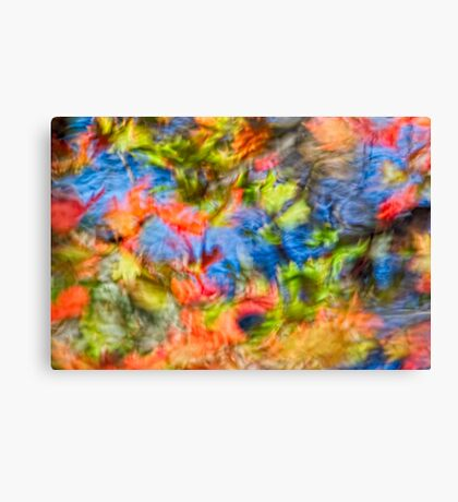 The Feast of Fall  Canvas Print