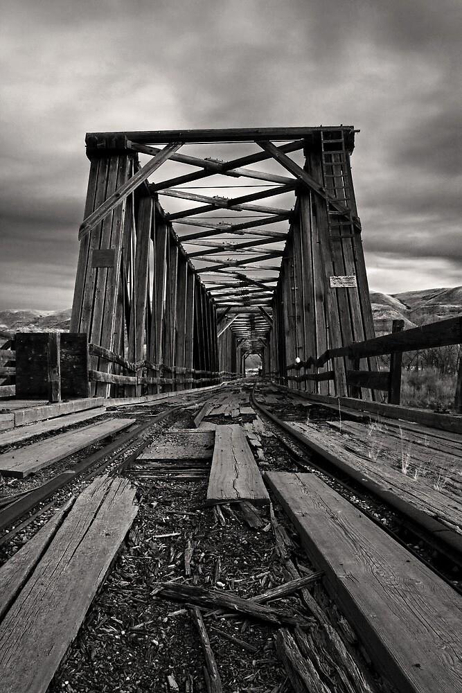 Troubled Bridge by Michael Collier