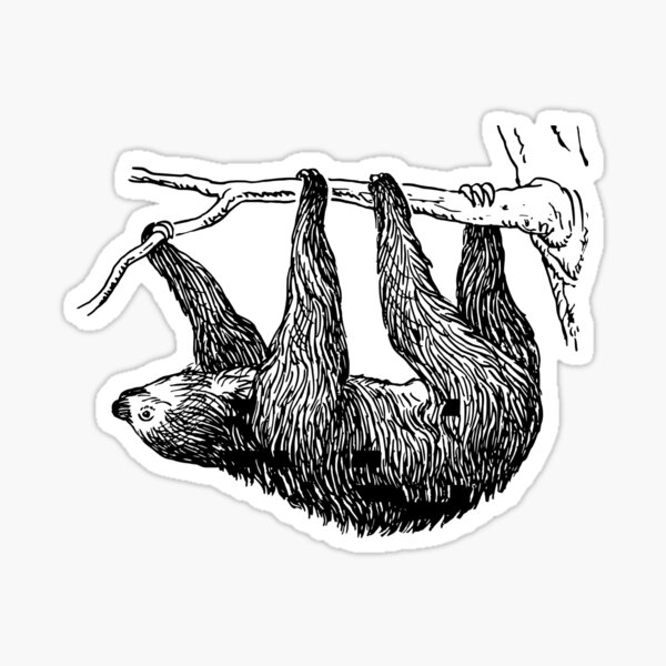 Vintage Sloth Sticker