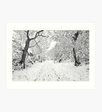 Footprints in the Snow Art Print