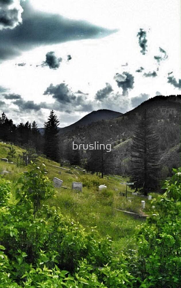 Idaho Springs Cemetery by brusling