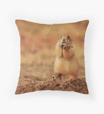 Day 65 Throw Pillow