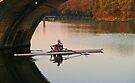 Morning Row - Muese River, France by Paul Gilbert