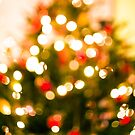 Christmas Tree Bokeh I by Adam Lack