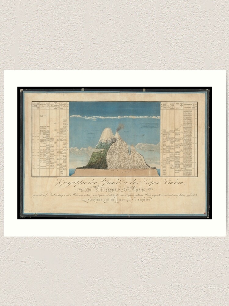 Alternate view of Alexander von Humboldt - Section View of Plants on the Chimborazo and Cotopaxi Volcanoes (1807) Art Print