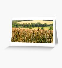 Chess Valley, Buckinghamshire, England  Greeting Card