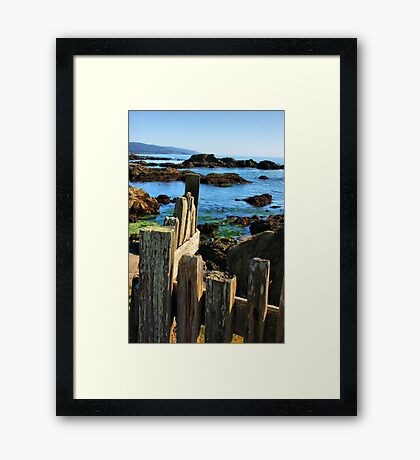 Sonoma Coast Framed Print