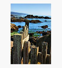 Sonoma Coast Photographic Print