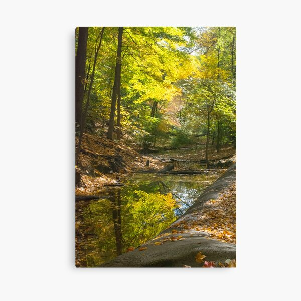 Autumn--Frick Park Pittsburgh Canvas Print