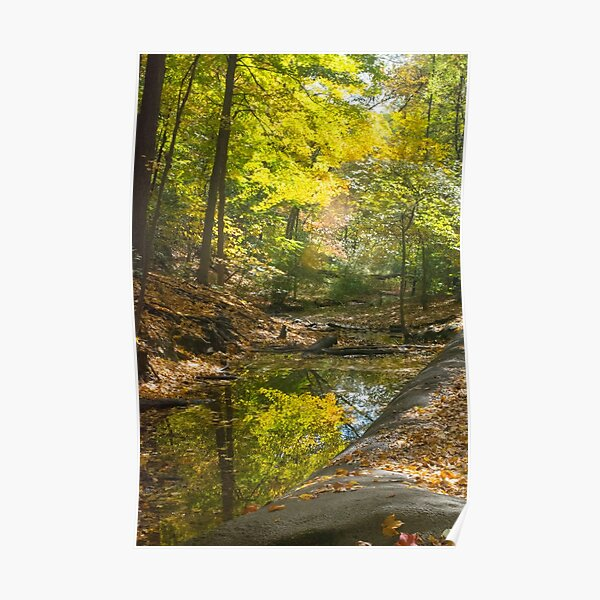 Autumn--Frick Park Pittsburgh Poster