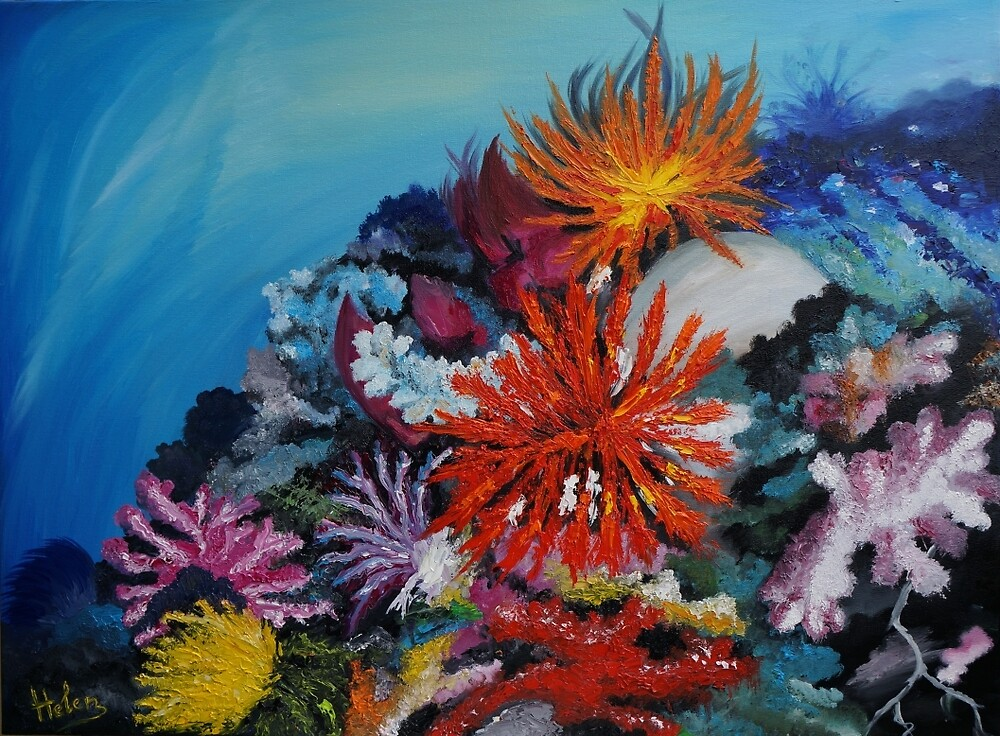 Colorful corals and seafloor by Helen Bellart
