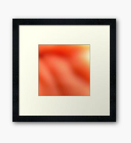 Soft Orange Framed Print