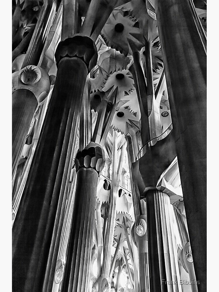 Columns, La Sagrada Familia by organicman2
