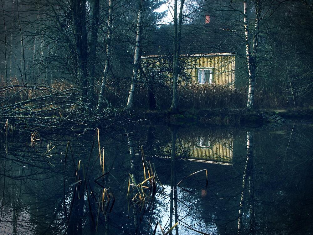 9.11.2011: Quiet Autumn morning by Petri Volanen