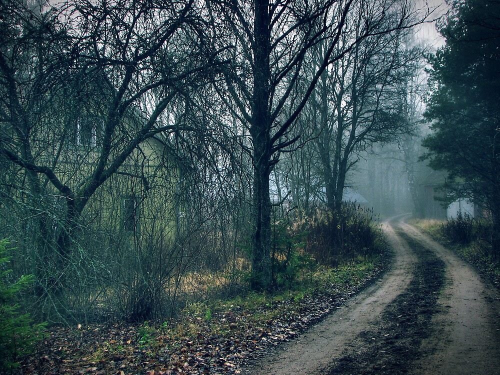 9.11.2011: Quiet Autumn Morning II by Petri Volanen