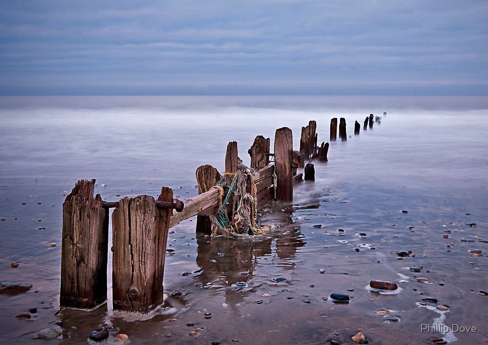 North Sea Groynes  by Phillip Dove
