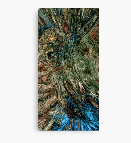 The Chaos Inside My Mind Canvas Print