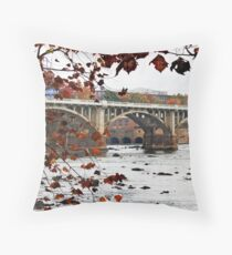 Columbia on the Congaree Throw Pillow