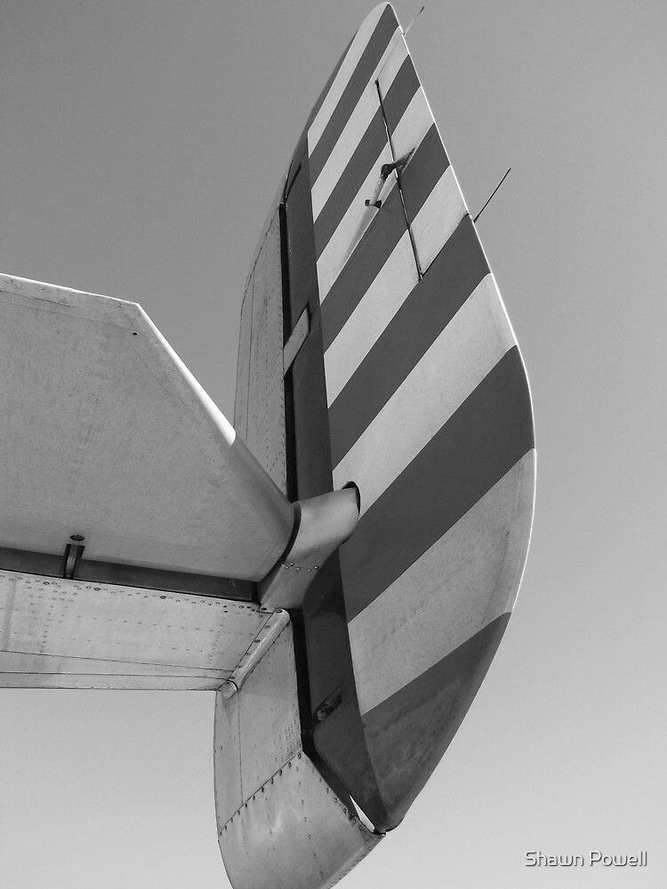 B-25 Tail by Shawn Powell