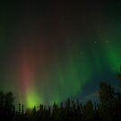 Aurora Borealis-2 by Elisabeth van Eyken