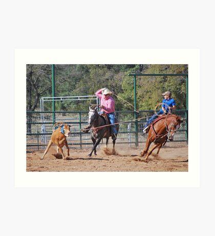 Steer Roping Art Print