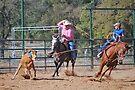 Steer Roping by Cathy Jones