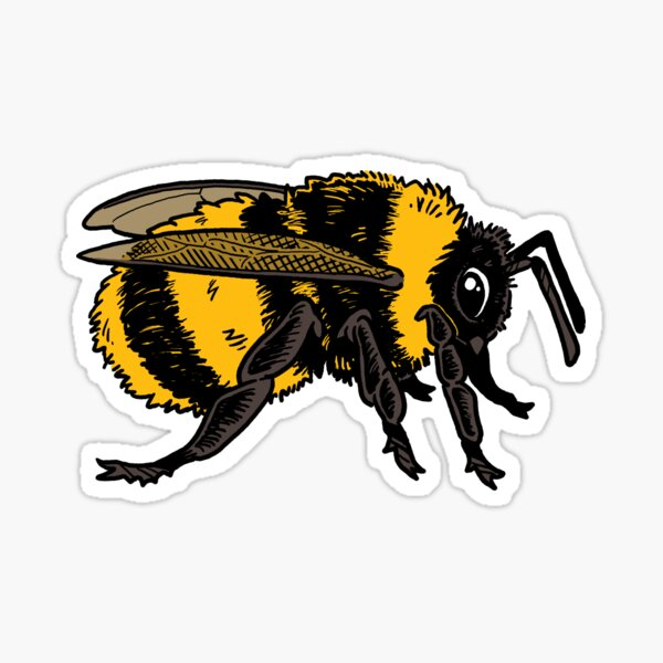 Bumblebee (Profile) Sticker