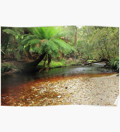Detention River in nor west Tasmania , Australia Poster