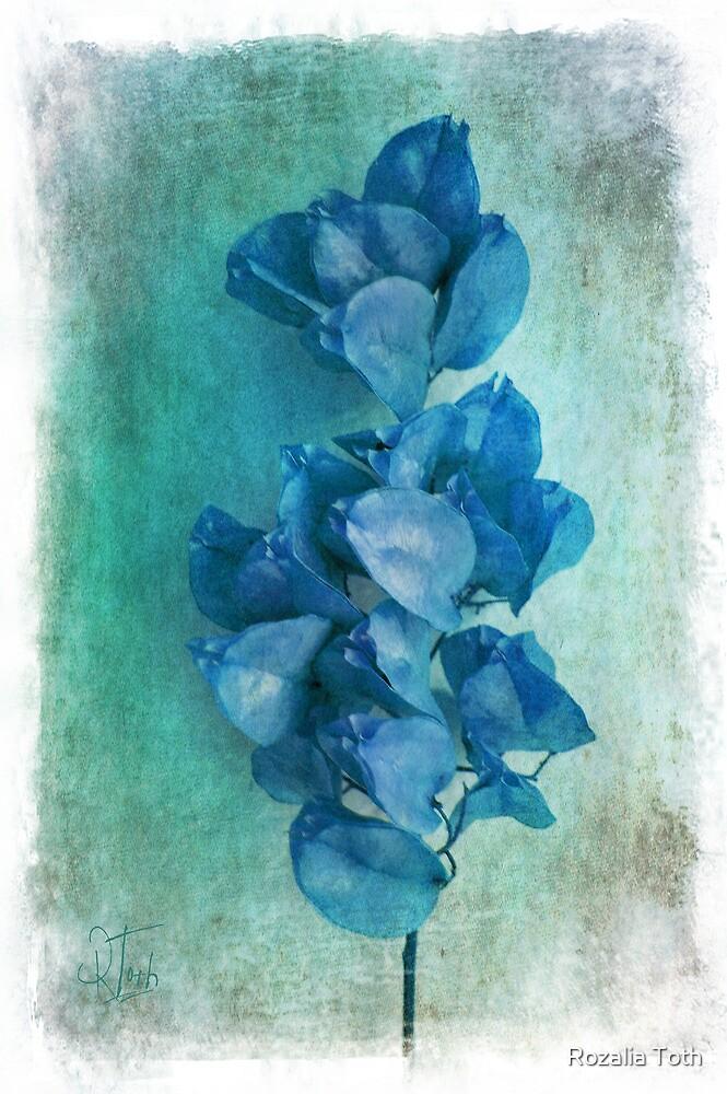 Autumn Blues by Rozalia Toth