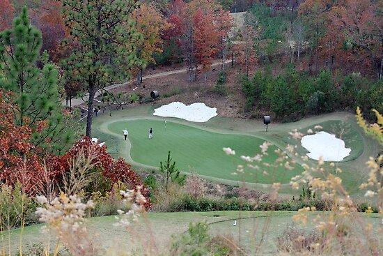 Golf Anyone? by DebbieCHayes