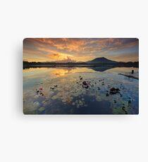 Sampaloc Lake Canvas Print