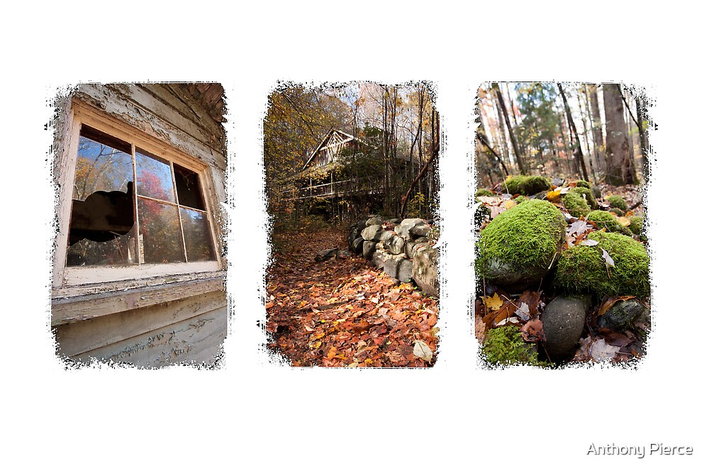 The Magic of Elkmont by Anthony Pierce