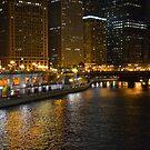 Chicago After Dark by Brian Gaynor