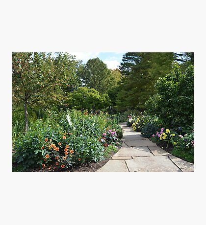 A Path Into a Colorful Flower Garden Photographic Print